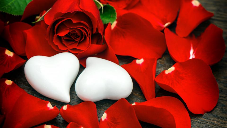 Гадание на лепестках роз на любовь и отношения